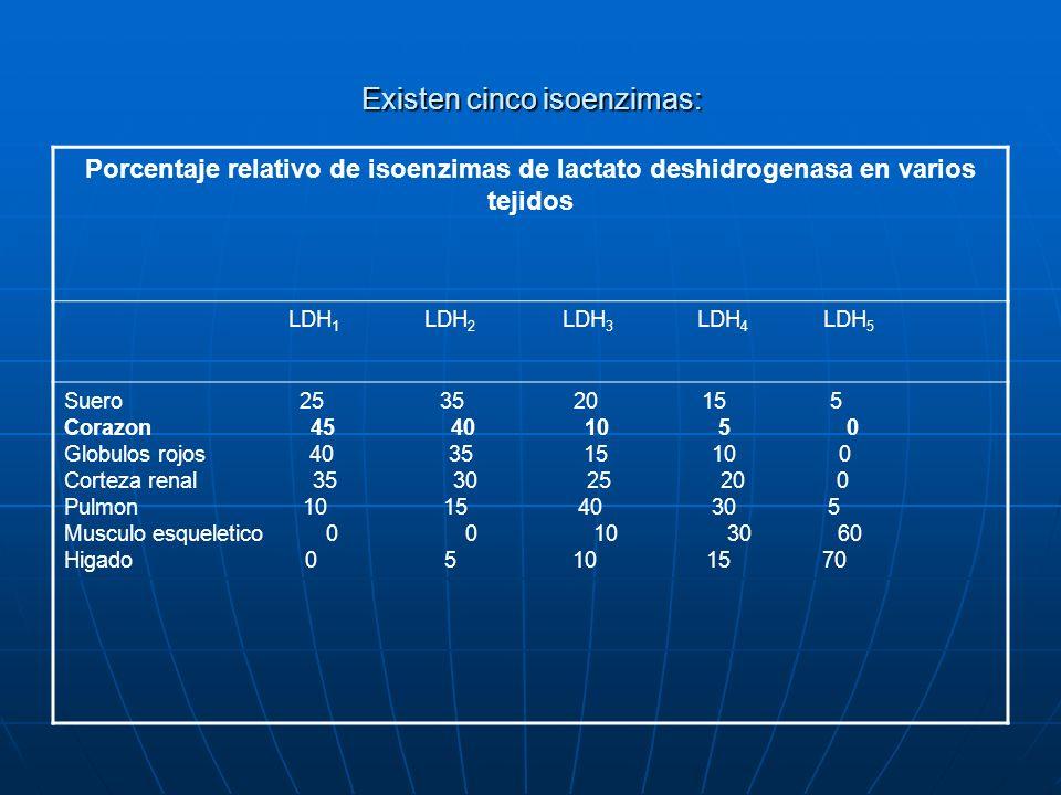Existen cinco isoenzimas: Porcentaje relativo de isoenzimas de lactato deshidrogenasa en varios tejidos LDH 1 LDH 2 LDH 3 LDH 4 LDH 5 Suero 25 35 20 1