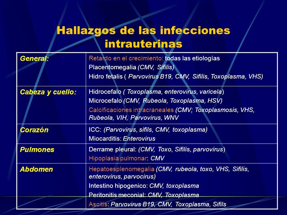 Hallazgos de las infecciones intrauterinas General: Retardo en el crecimiento: todas las etiologías Placentomegalia (CMV, Sifilis) Hidro fetalis ( Par