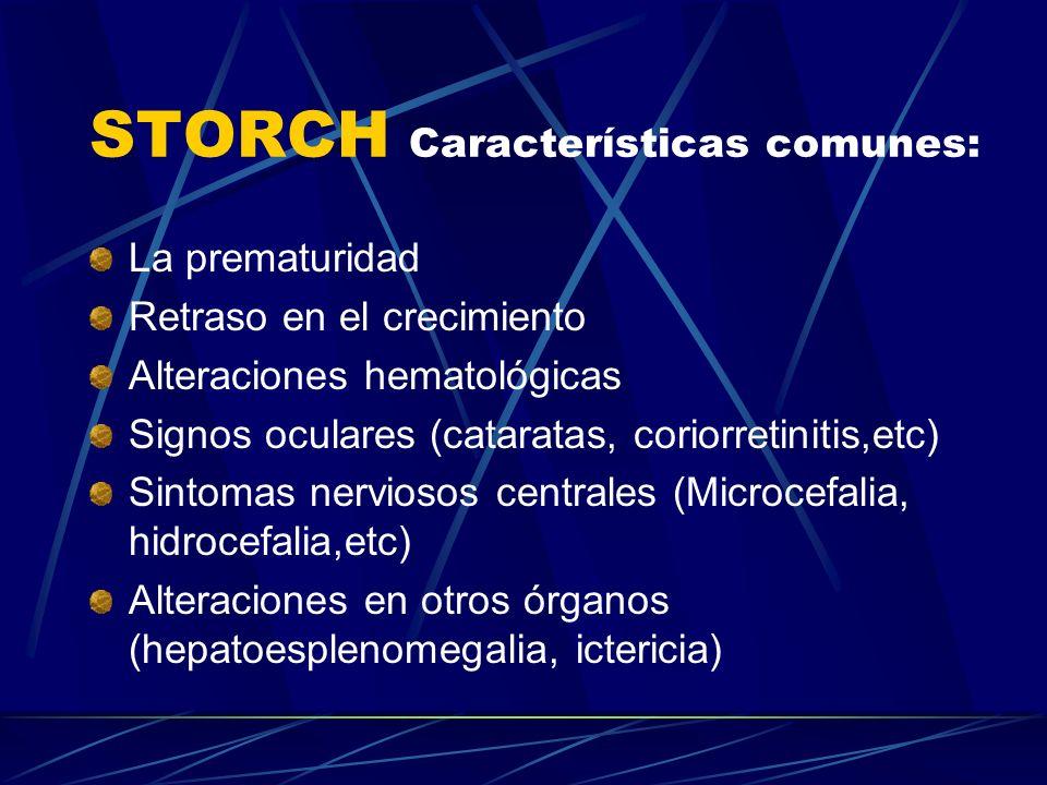 STORCH Características comunes: La prematuridad Retraso en el crecimiento Alteraciones hematológicas Signos oculares (cataratas, coriorretinitis,etc)