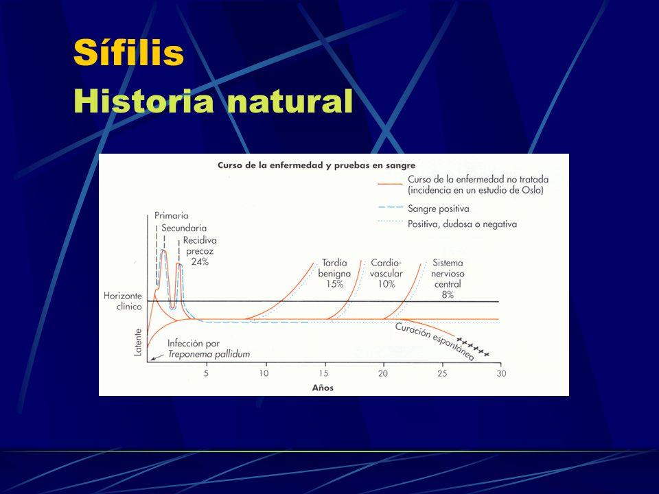 Sífilis Historia natural