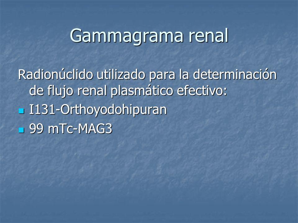 Gammagrama renal Radionúclido utilizado para la determinación de flujo renal plasmático efectivo: I131-Orthoyodohipuran I131-Orthoyodohipuran 99 mTc-M