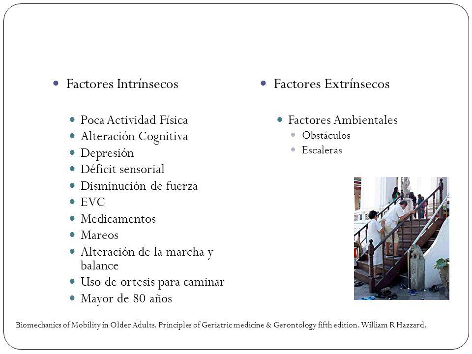 Factores Intrínsecos Poca Actividad Física Alteración Cognitiva Depresión Déficit sensorial Disminución de fuerza EVC Medicamentos Mareos Alteración d