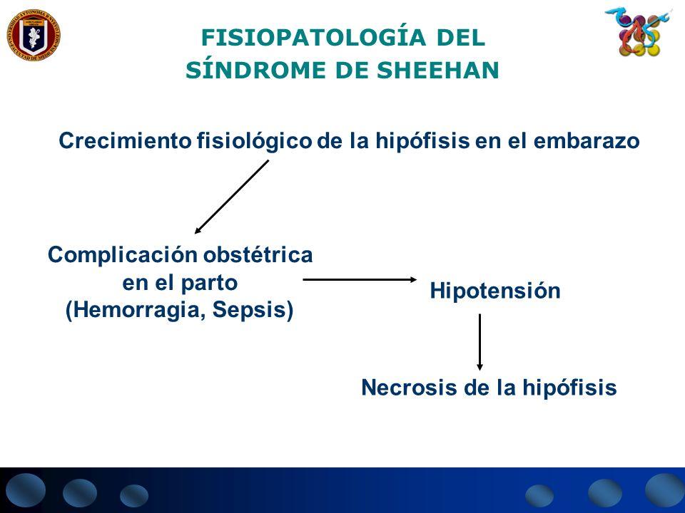 FISIOPATOLOGÍA DEL SÍNDROME DE SHEEHAN Crecimiento fisiológico de la hipófisis en el embarazo Complicación obstétrica en el parto (Hemorragia, Sepsis)