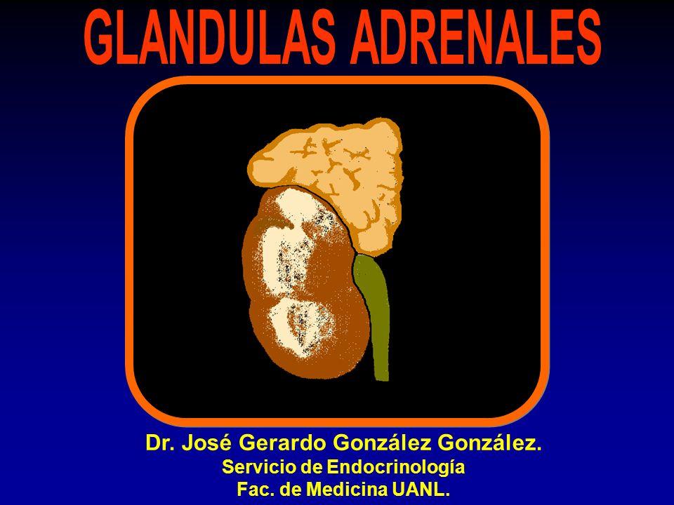 Dr. José Gerardo González González. Servicio de Endocrinología Fac. de Medicina UANL.