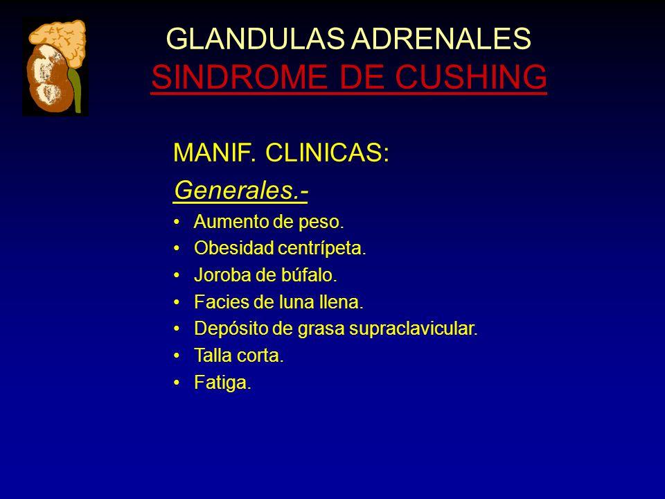 GLANDULAS ADRENALES SINDROME DE CUSHING MANIF. CLINICAS: Generales.- Aumento de peso.