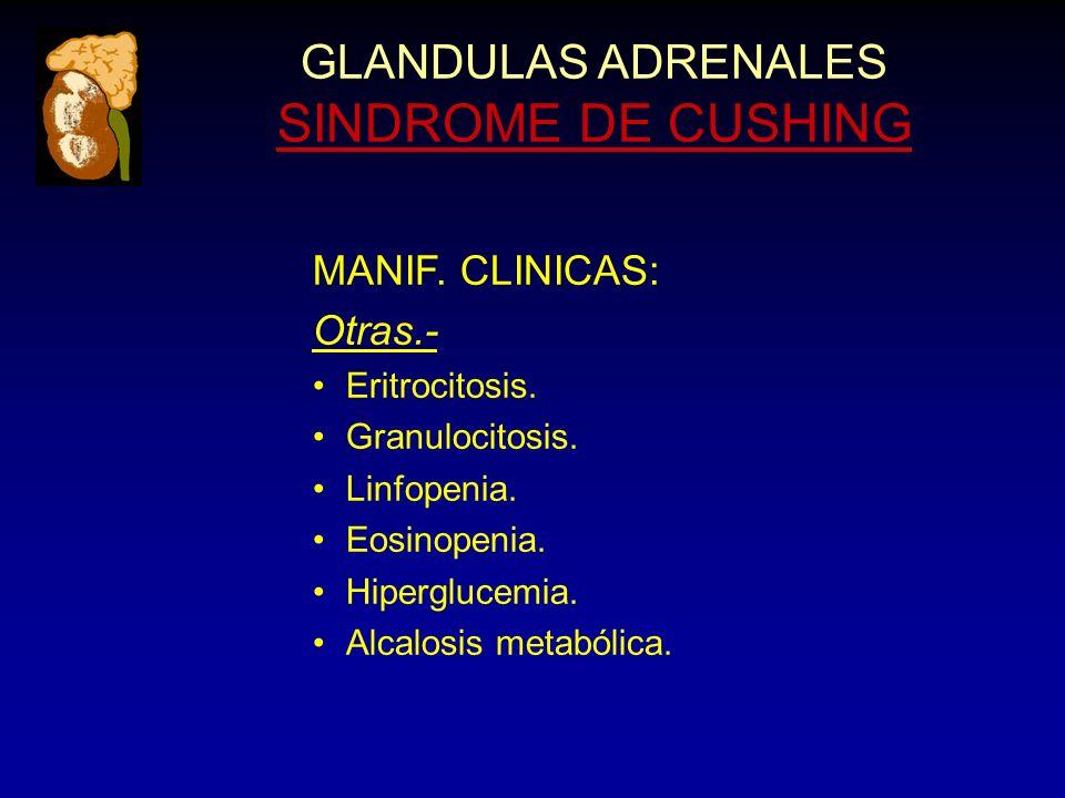 GLANDULAS ADRENALES SINDROME DE CUSHING MANIF. CLINICAS: Otras.- Eritrocitosis.