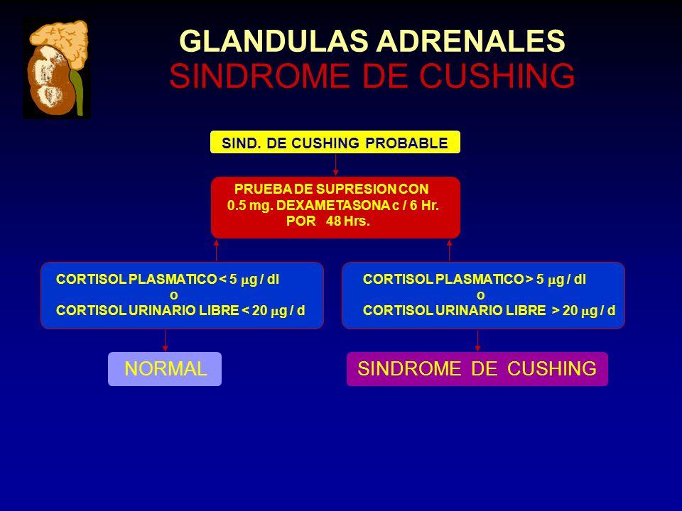 CORTISOL PLASMATICO < 5 g / dl o CORTISOL URINARIO LIBRE < 20 g / d NORMAL SIND.