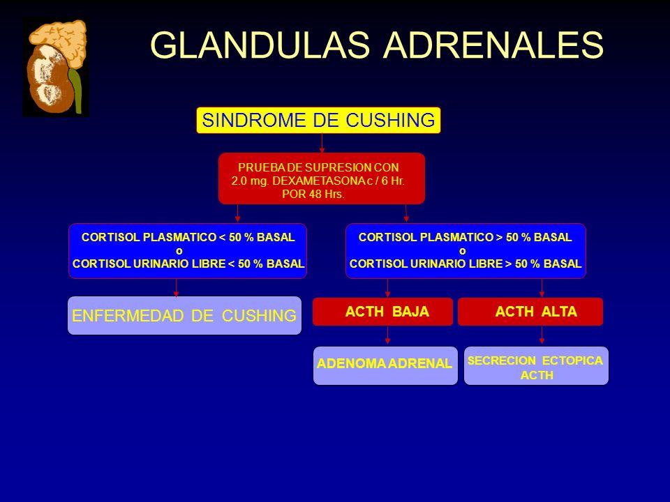 GLANDULAS ADRENALES PRUEBA DE SUPRESION CON 2.0 mg.