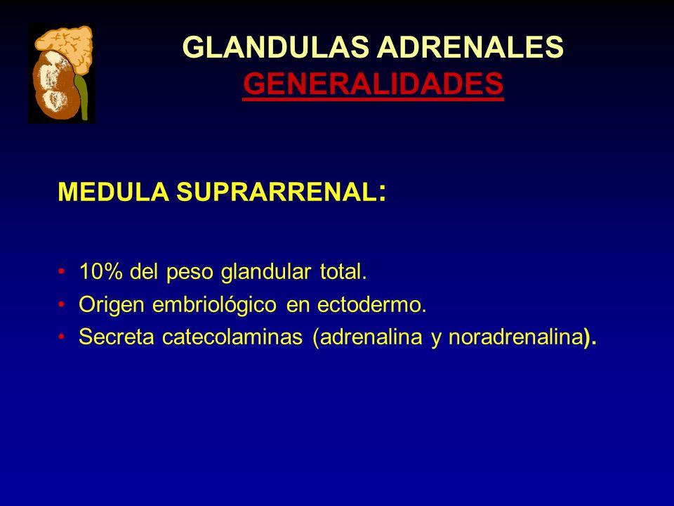 GLANDULAS ADRENALES SINDROME DE CUSHING HALLAZGOS DE MINIMO VALOR CLINICO: Obesidad.