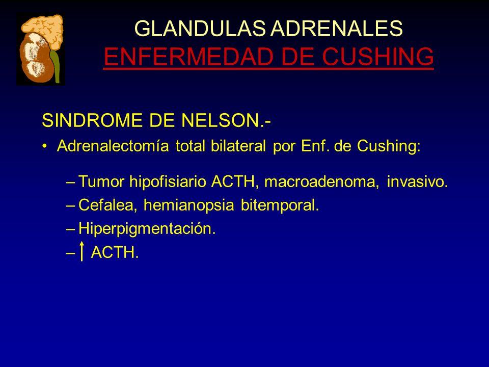 GLANDULAS ADRENALES ENFERMEDAD DE CUSHING SINDROME DE NELSON.- Adrenalectomía total bilateral por Enf.