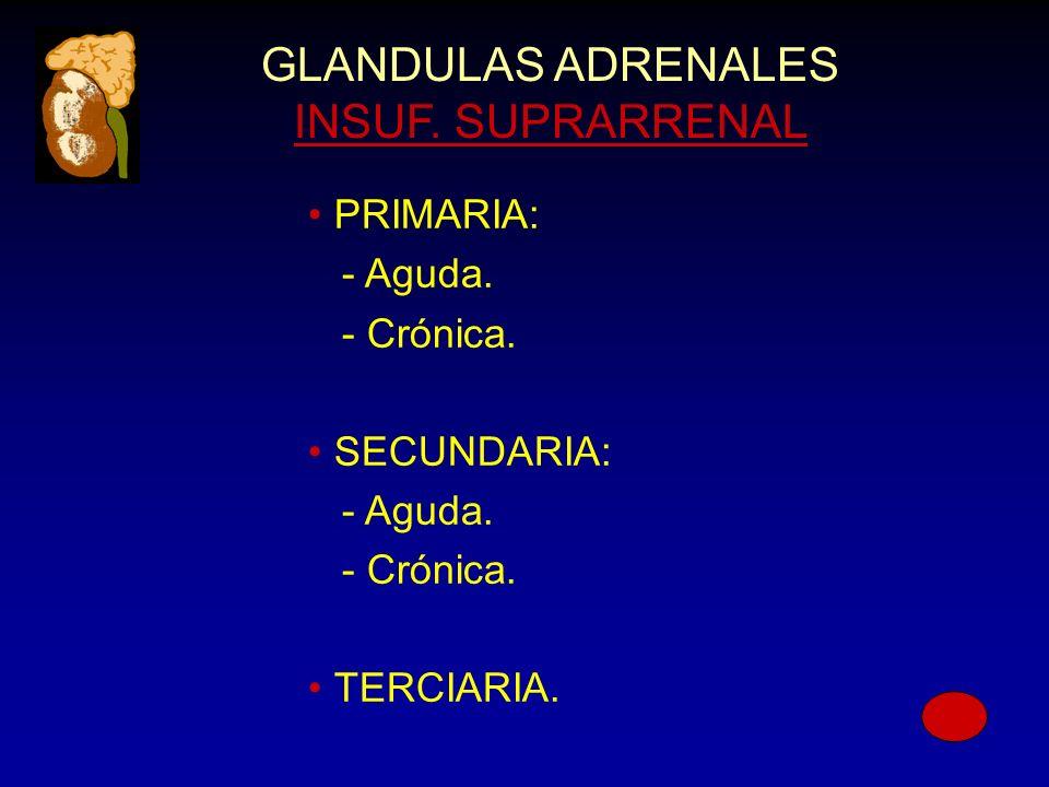 GLANDULAS ADRENALES INSUF. SUPRARRENAL PRIMARIA: - Aguda.