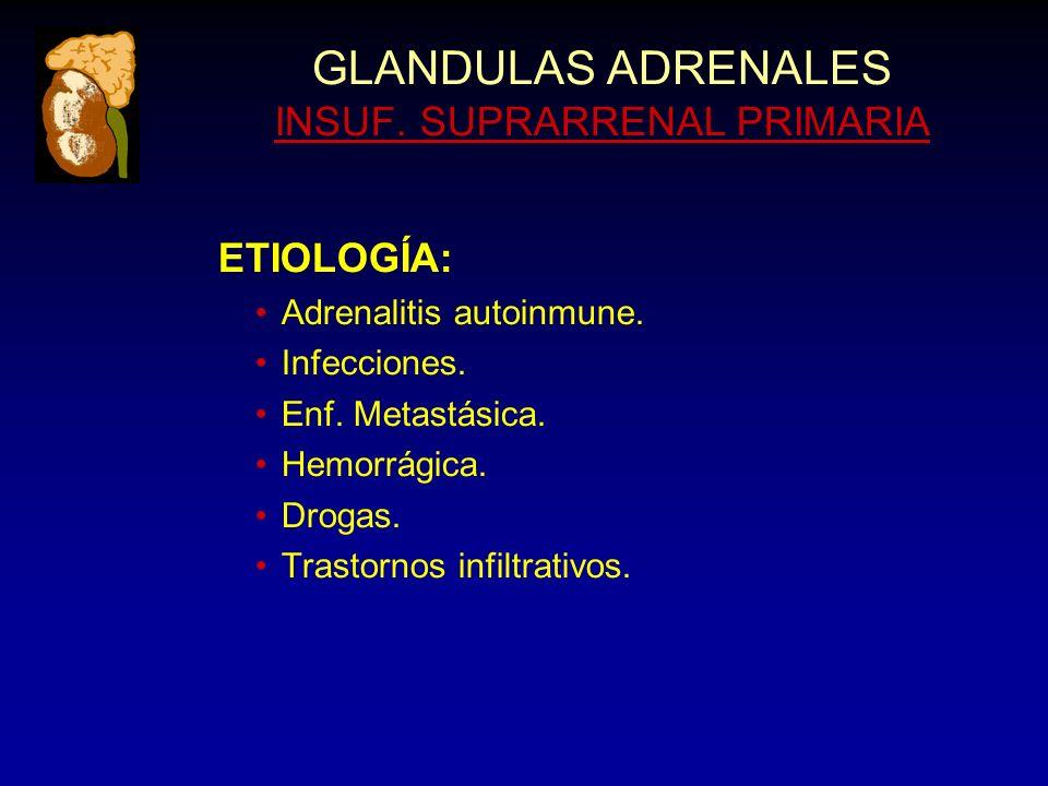 GLANDULAS ADRENALES INSUF. SUPRARRENAL PRIMARIA ETIOLOGÍA: Adrenalitis autoinmune.