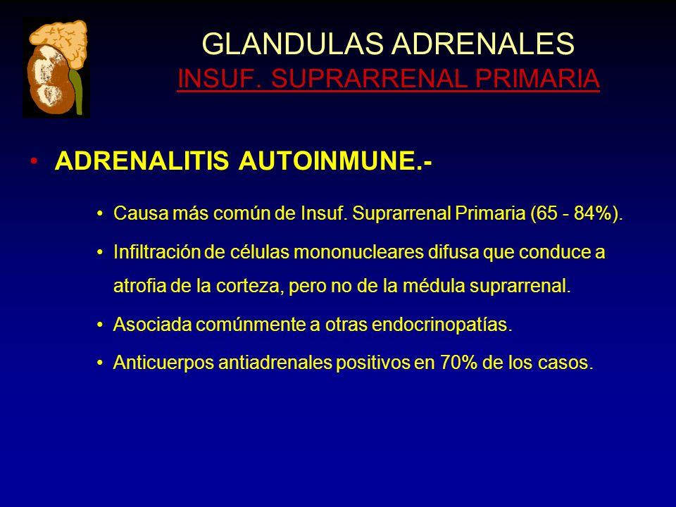 GLANDULAS ADRENALES INSUF. SUPRARRENAL PRIMARIA ADRENALITIS AUTOINMUNE.- Causa más común de Insuf.