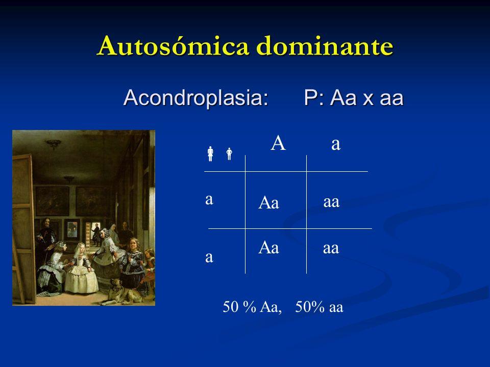 Autosómica dominante Acondroplasia: P: Aa x aa aa Aa a a Aa 50 % Aa, 50% aa