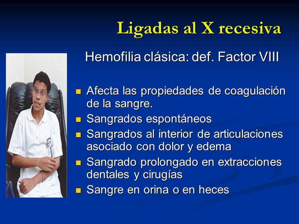 Ligadas al X recesiva Hemofilia clásica: def. Factor VIII Hemofilia clásica: def. Factor VIII Afecta las propiedades de coagulación de la sangre. Afec