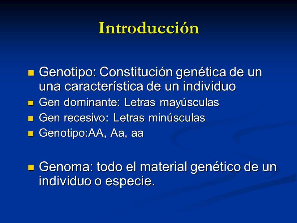 Introducción Genotipo: Constitución genética de un una característica de un individuo Genotipo: Constitución genética de un una característica de un i