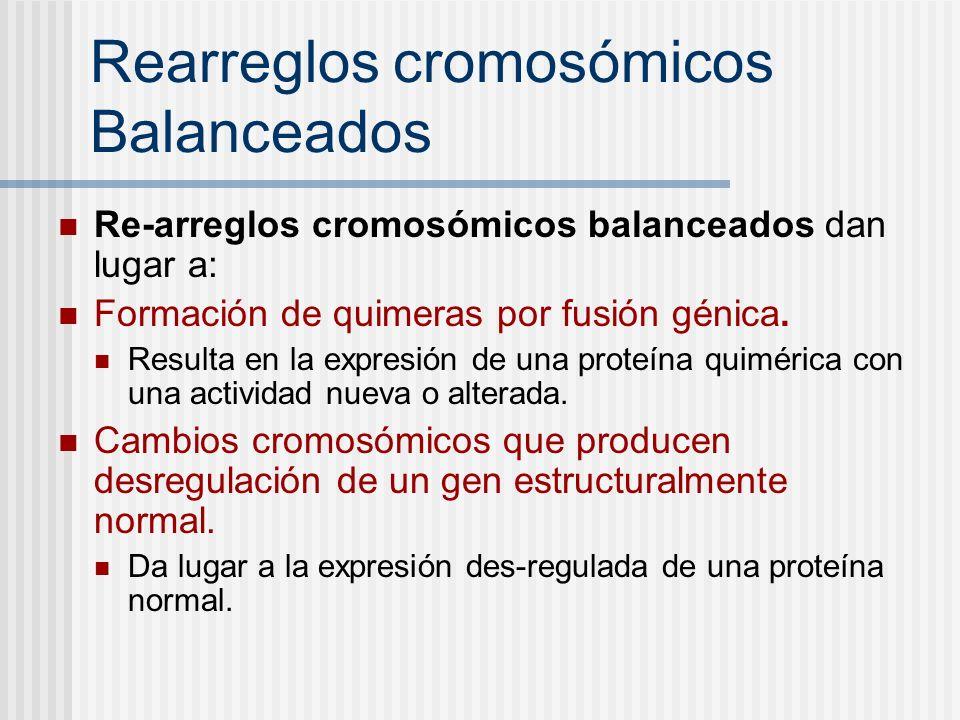 Rearreglos cromosómicos Balanceados Re-arreglos cromosómicos balanceados dan lugar a: Formación de quimeras por fusión génica. Resulta en la expresión