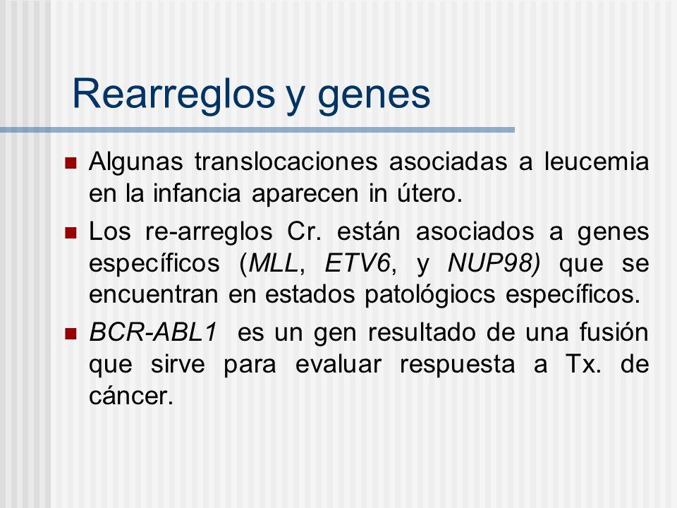 Rearreglos y genes Algunas translocaciones asociadas a leucemia en la infancia aparecen in útero. Los re-arreglos Cr. están asociados a genes específi