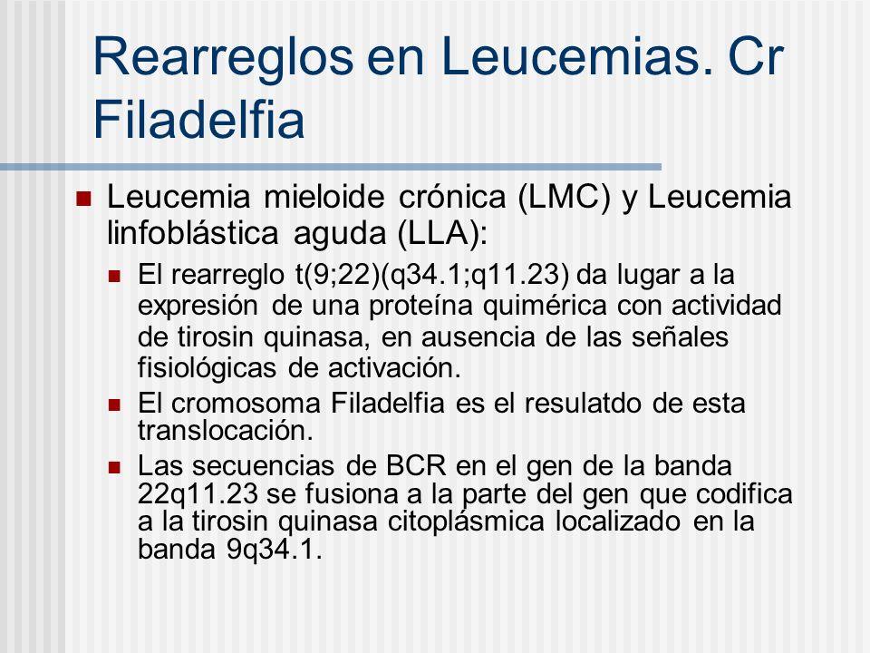 Rearreglos en Leucemias. Cr Filadelfia Leucemia mieloide crónica (LMC) y Leucemia linfoblástica aguda (LLA): El rearreglo t(9;22)(q34.1;q11.23) da lug