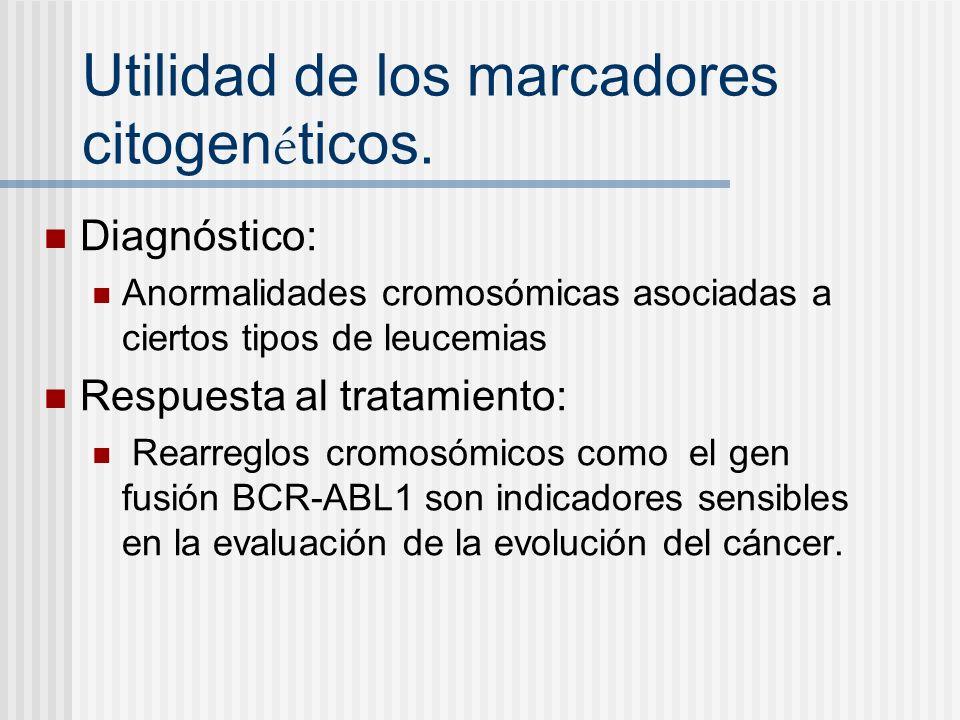 Utilidad de los marcadores citogen é ticos. Diagnóstico: Anormalidades cromosómicas asociadas a ciertos tipos de leucemias Respuesta al tratamiento: R