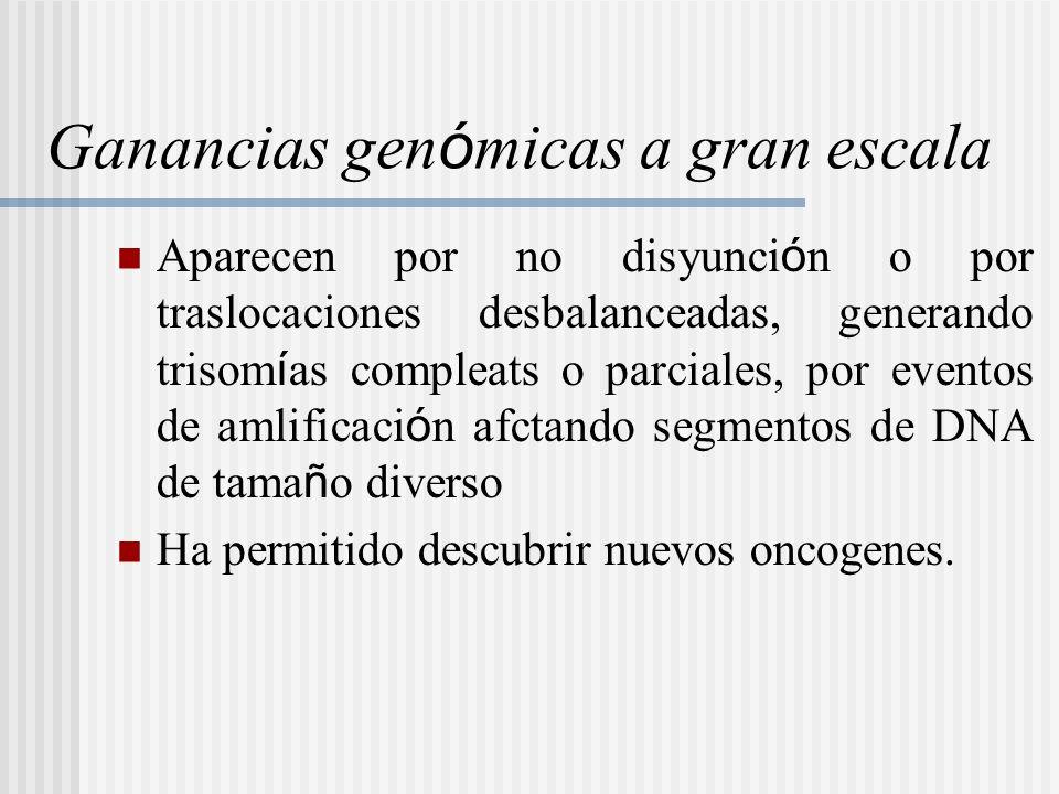 Ganancias gen ó micas a gran escala Aparecen por no disyunci ó n o por traslocaciones desbalanceadas, generando trisom í as compleats o parciales, por
