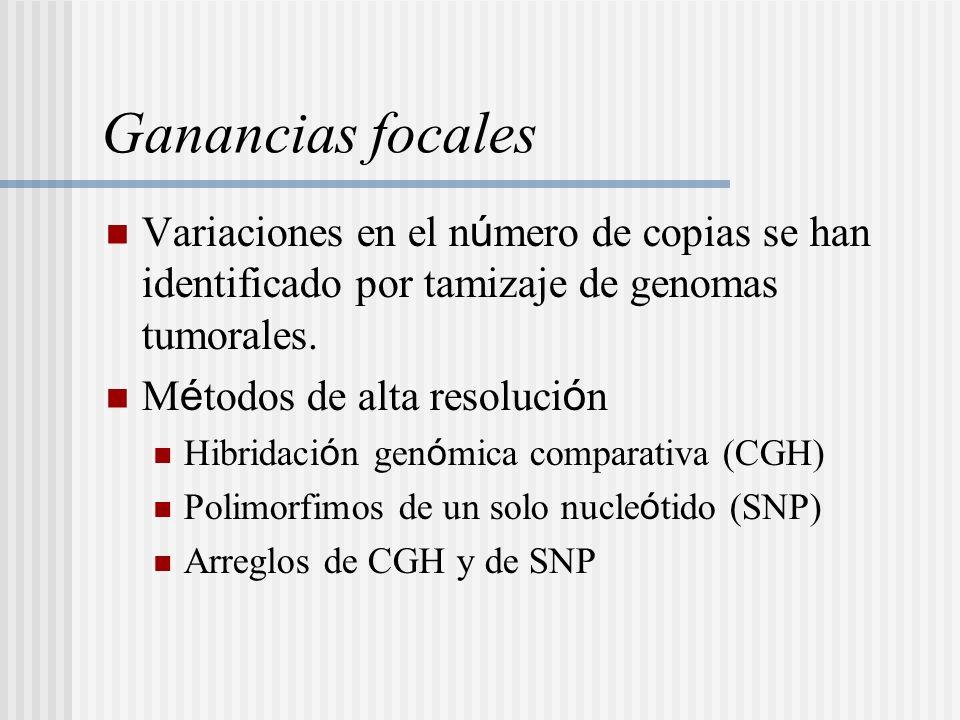 Ganancias focales Variaciones en el n ú mero de copias se han identificado por tamizaje de genomas tumorales. M é todos de alta resoluci ó n Hibridaci