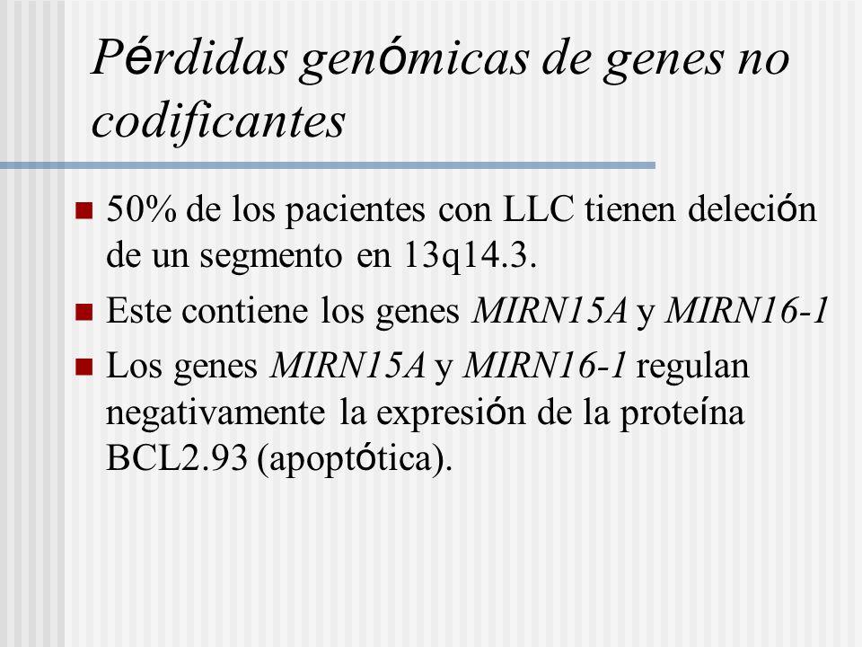 P é rdidas gen ó micas de genes no codificantes 50% de los pacientes con LLC tienen deleci ó n de un segmento en 13q14.3. Este contiene los genes MIRN