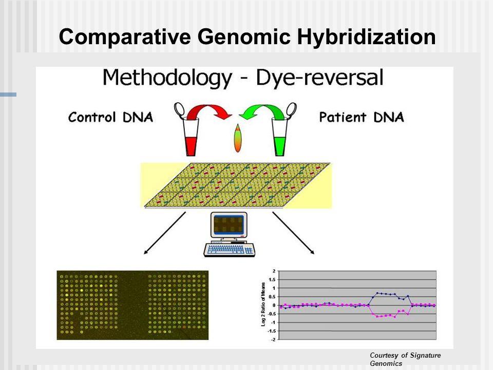 Courtesy of Signature Genomics Comparative Genomic Hybridization