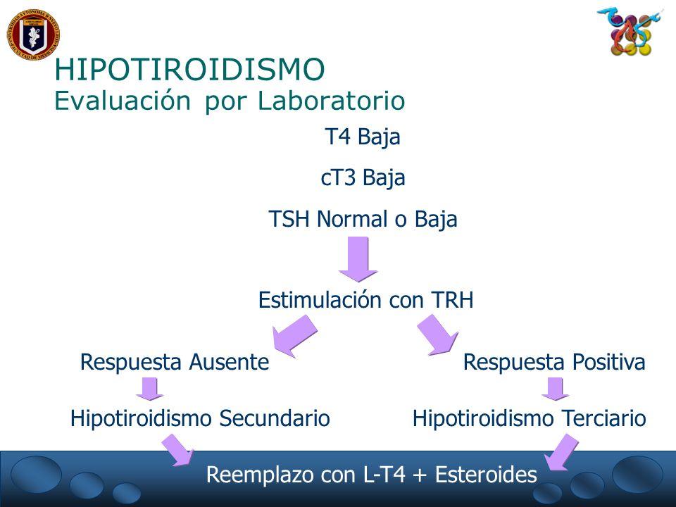 HIPOTIROIDISMO Evaluación por Laboratorio T4 Baja cT3 Baja TSH Normal o Baja Estimulación con TRH Respuesta Ausente Hipotiroidismo Secundario Reemplazo con L-T4 + Esteroides Respuesta Positiva Hipotiroidismo Terciario