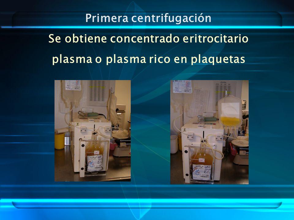 Primera centrifugación Se obtiene concentrado eritrocitario plasma o plasma rico en plaquetas