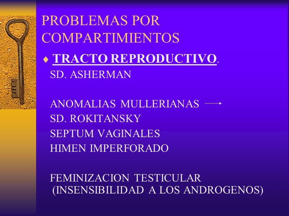 PROBLEMAS POR COMPARTIMIENTOS TRACTO REPRODUCTIVO. SD. ASHERMAN ANOMALIAS MULLERIANAS SD. ROKITANSKY SEPTUM VAGINALES HIMEN IMPERFORADO FEMINIZACION T