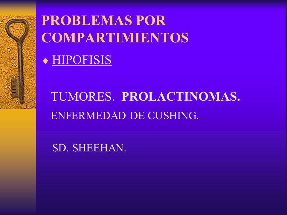 PROBLEMAS POR COMPARTIMIENTOS HIPOFISIS TUMORES. PROLACTINOMAS. ENFERMEDAD DE CUSHING. SD. SHEEHAN.