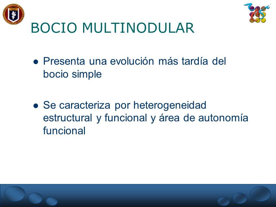 BOCIO MULTINODULAR Presenta una evolución más tardía del bocio simple Se caracteriza por heterogeneidad estructural y funcional y área de autonomía fu