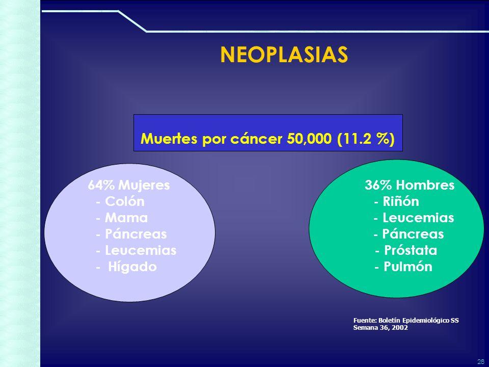 28 NEOPLASIAS Muertes por cáncer 50,000 (11.2 %) 64% Mujeres 36% Hombres - Colón - Riñón - Mama - Leucemias - Páncreas - Páncreas - Leucemias - Próstata - Hígado - Pulmón Fuente: Boletín Epidemiológico SS Semana 36, 2002