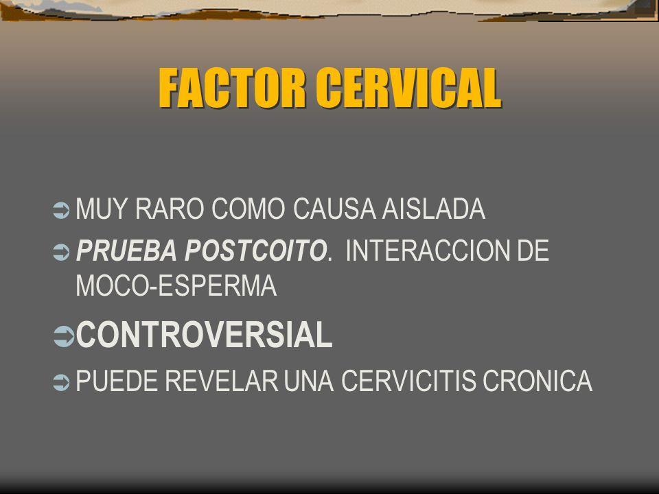FACTOR CERVICAL MUY RARO COMO CAUSA AISLADA PRUEBA POSTCOITO. INTERACCION DE MOCO-ESPERMA CONTROVERSIAL PUEDE REVELAR UNA CERVICITIS CRONICA