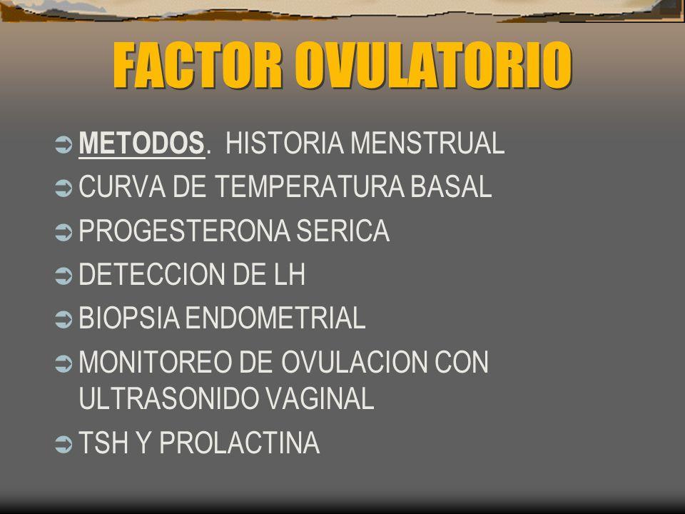 FACTOR OVULATORIO METODOS. HISTORIA MENSTRUAL CURVA DE TEMPERATURA BASAL PROGESTERONA SERICA DETECCION DE LH BIOPSIA ENDOMETRIAL MONITOREO DE OVULACIO