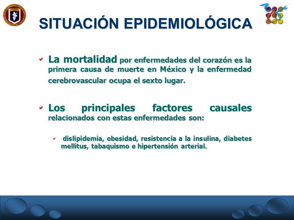 La mortalidad por enfermedades del corazón es la primera causa de muerte en México y la enfermedad cerebrovascular ocupa el sexto lugar. La mortalidad