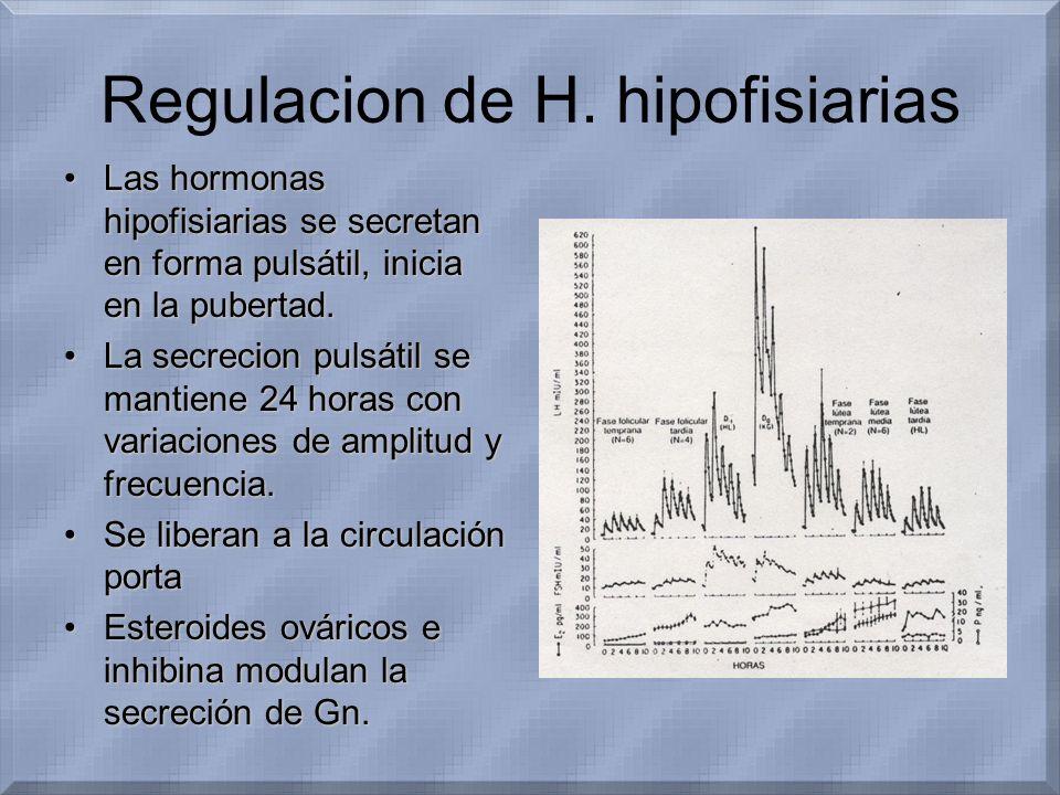 Regulacion de H. hipofisiarias Las hormonas hipofisiarias se secretan en forma pulsátil, inicia en la pubertad.Las hormonas hipofisiarias se secretan