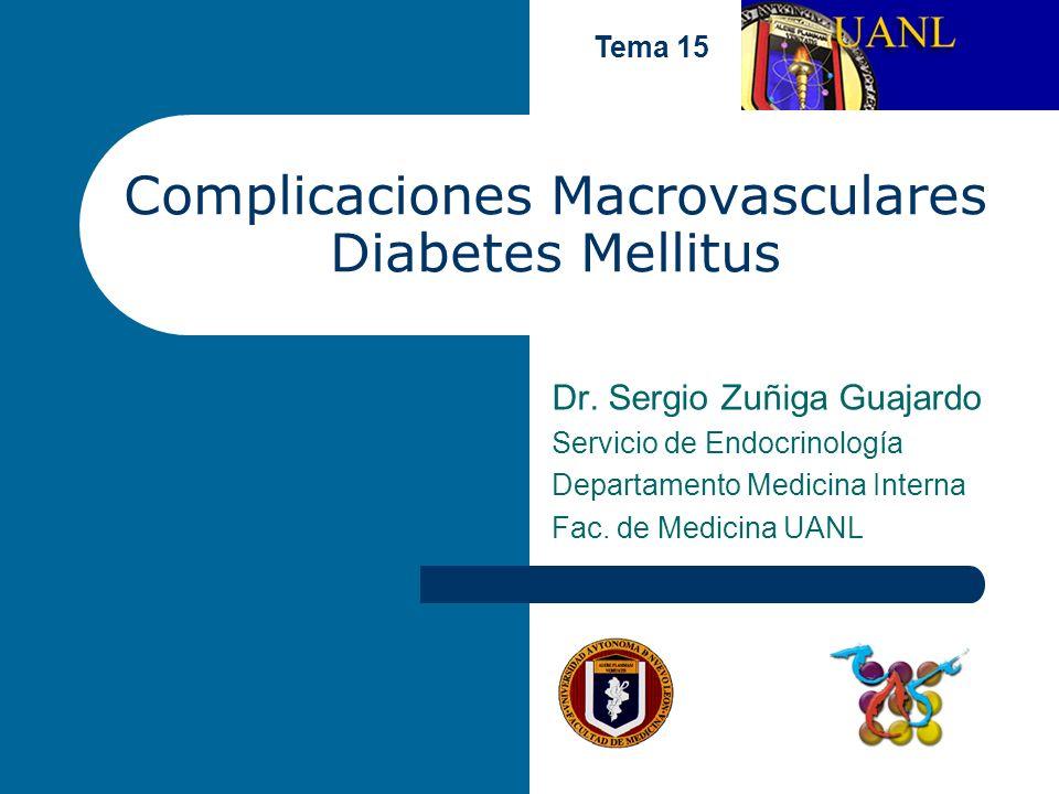 Complicaciones Macrovasculares Diabetes Mellitus Dr. Sergio Zuñiga Guajardo Servicio de Endocrinología Departamento Medicina Interna Fac. de Medicina
