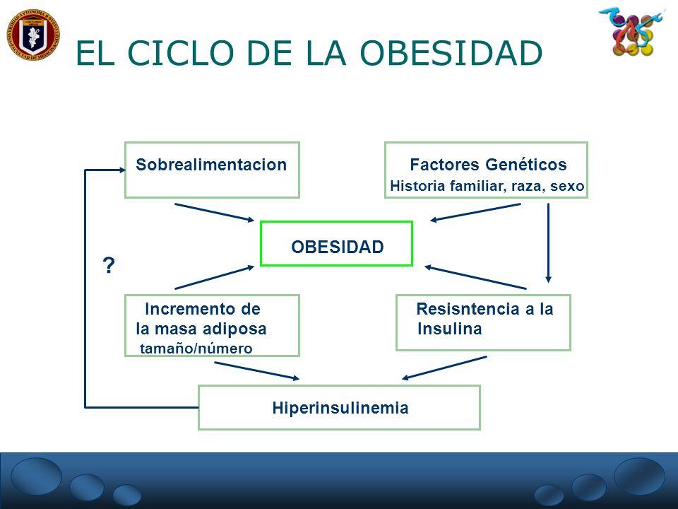 DISLIPIDEMIA EN ADULTOS CON DIABETES Framingham Heart Study Hombres Mujeres Normal DM Normal DM Colesterol 14% 13% 21% 24% LDL-C 11% 9% 16% 15% HDL-C 12% * 21% 10% * 25% Trigliceridos 9% * 19% 8% * 17% * P< 0.05 Garg and Grundy, Diabetes Care 13:153, 1990