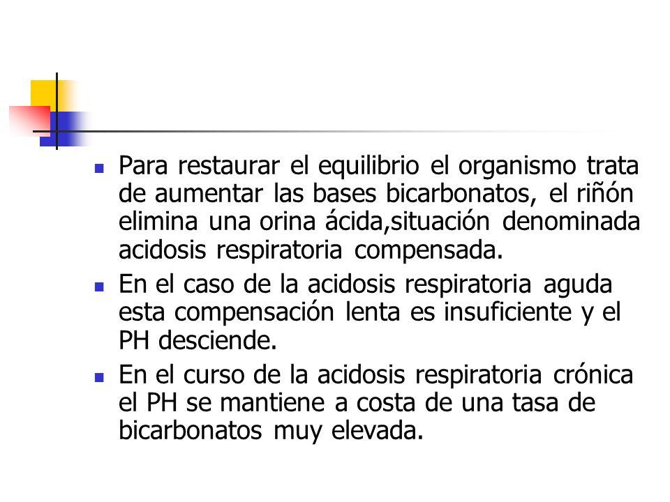 Para restaurar el equilibrio el organismo trata de aumentar las bases bicarbonatos, el riñón elimina una orina ácida,situación denominada acidosis res