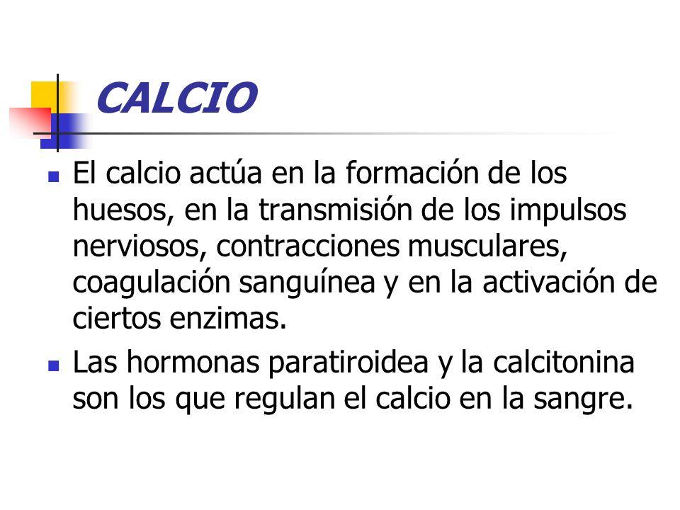 CALCIO El calcio actúa en la formación de los huesos, en la transmisión de los impulsos nerviosos, contracciones musculares, coagulación sanguínea y e