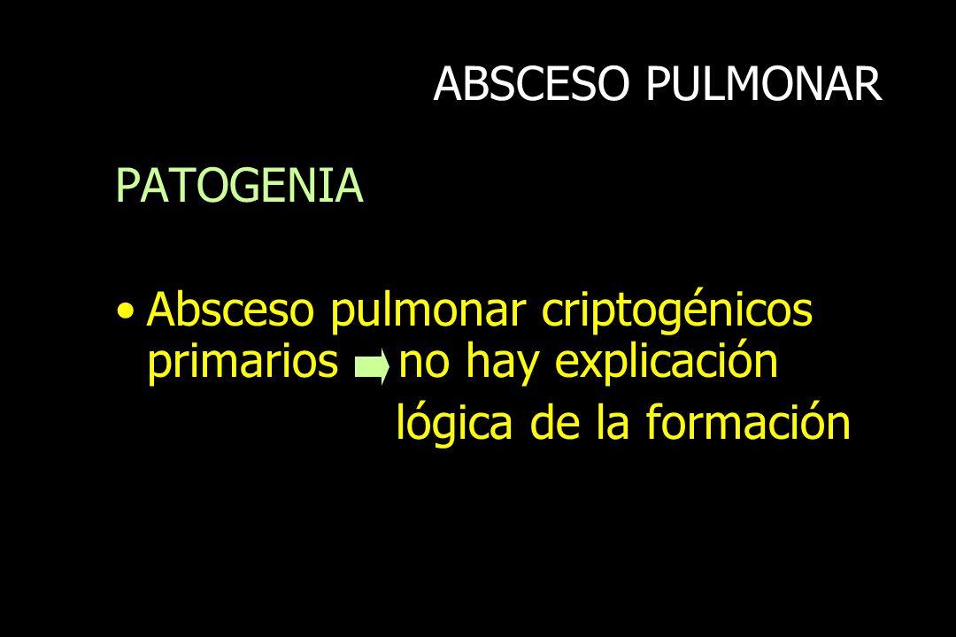 ABSCESO PULMONAR PATOGENIA Absceso pulmonar criptogénicos primarios no hay explicación lógica de la formación