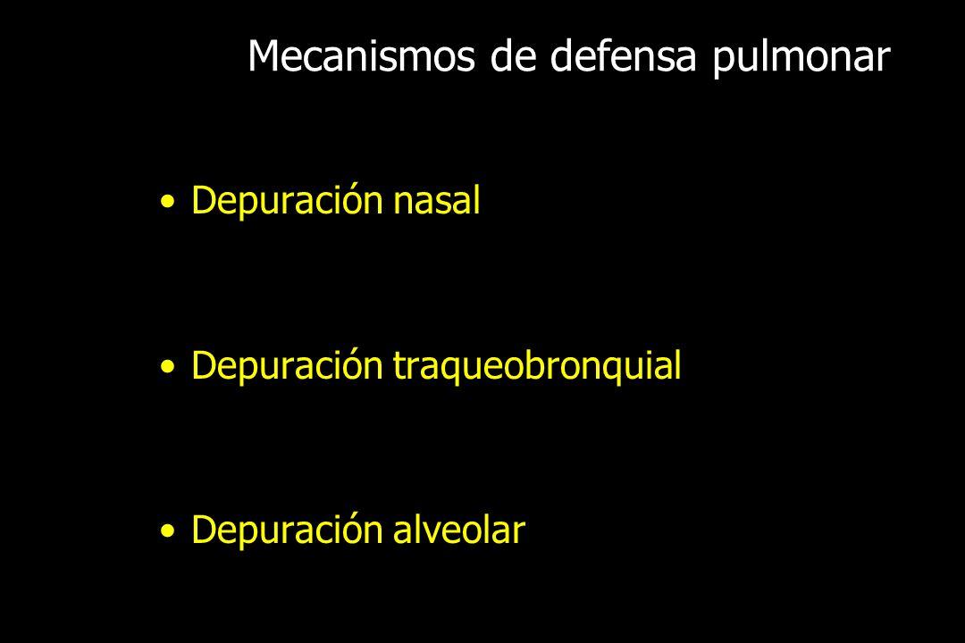 Mecanismos de defensa pulmonar Depuración nasal Depuración traqueobronquial Depuración alveolar