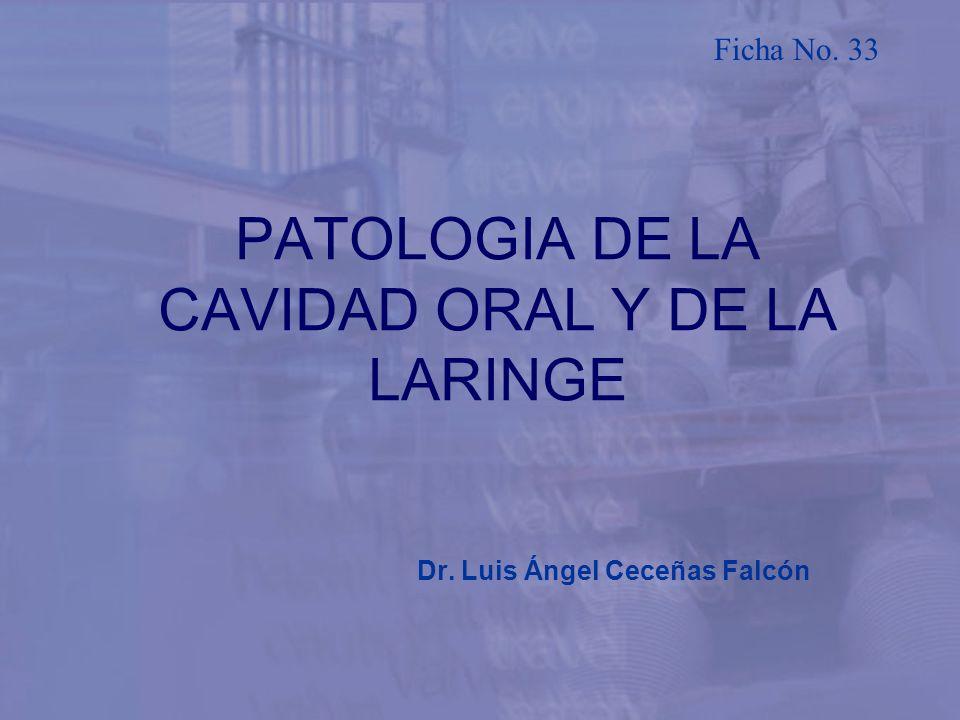 PATOLOGIA DE LA CAVIDAD ORAL Y DE LA LARINGE Dr. Luis Ángel Ceceñas Falcón Ficha No. 33