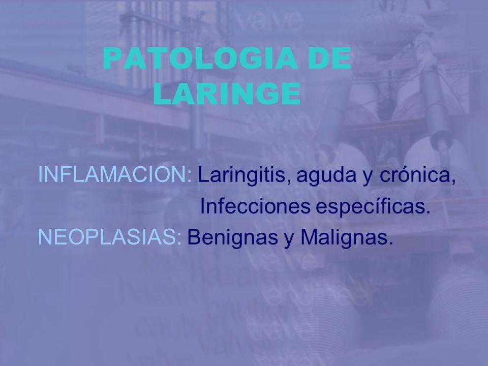 PATOLOGIA DE LARINGE INFLAMACION: Laringitis, aguda y crónica, Infecciones específicas. NEOPLASIAS: Benignas y Malignas.