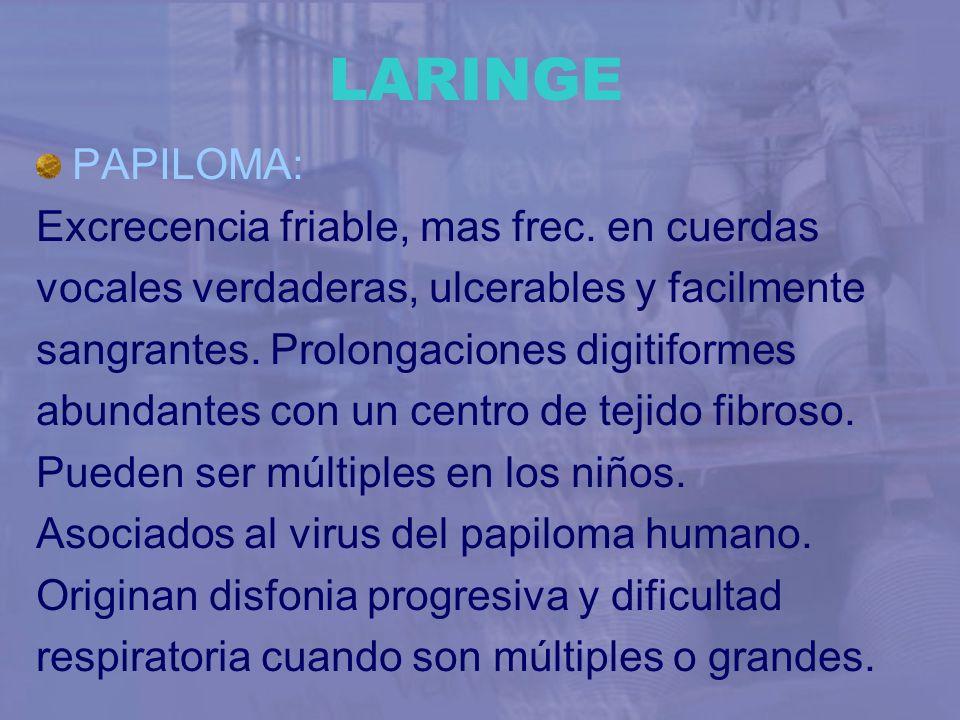 LARINGE PAPILOMA: Excrecencia friable, mas frec. en cuerdas vocales verdaderas, ulcerables y facilmente sangrantes. Prolongaciones digitiformes abunda