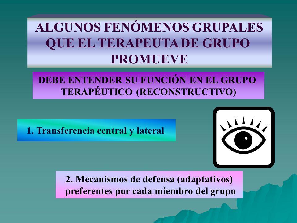 ALGUNOS FENÓMENOS GRUPALES QUE EL TERAPEUTA DE GRUPO PROMUEVE DEBE ENTENDER SU FUNCIÓN EN EL GRUPO TERAPÉUTICO (RECONSTRUCTIVO) 1. Transferencia centr
