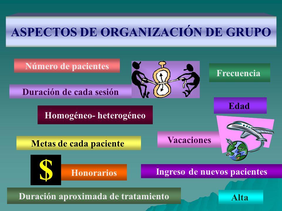ASPECTOS DE ORGANIZACIÓN DE GRUPO Número de pacientes Frecuencia Homogéneo- heterogéneo Duración de cada sesión Metas de cada paciente Edad Honorarios