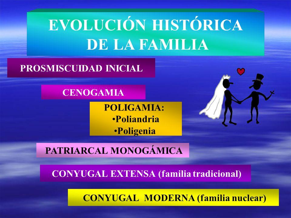 PROSMISCUIDAD INICIAL CENOGAMIA POLIGAMIA: Poliandria Poligenia PATRIARCAL MONOGÁMICA CONYUGAL EXTENSA (familia tradicional) EVOLUCIÓN HISTÓRICA DE LA
